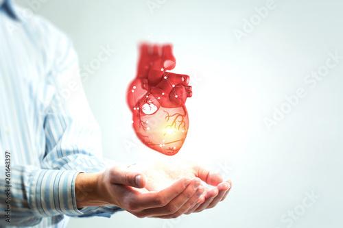 Fotografie, Obraz Man s hands showing anatomical heart model..