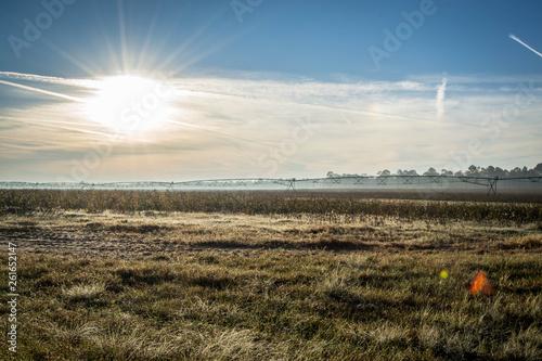 Fényképezés  Sun over green field