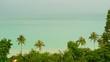 Paradise island exotic beach tropical plants before rain swaing in the wind