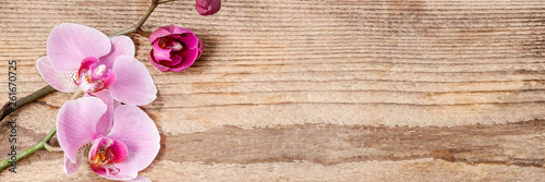 Keuken foto achterwand Orchidee Beautiful pink orchid flowers on wooden background.