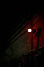 赤い裸電球