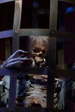 Skeleton Caged In Medieval Cage