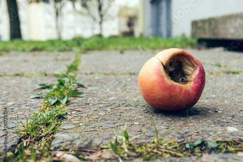 Fotografie, Obraz  rotten apple on a street