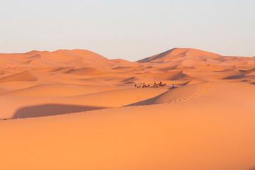 Fototapeta na wymiar Morocco, Merzouga, Erg Chebbi Dunes, Tourists Riding Camels