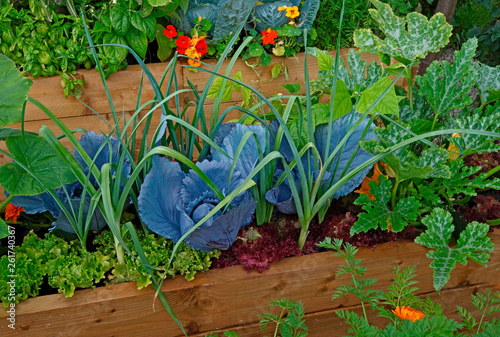 Raised vegetable container with selection of vegetables and flowers in an allotm Wallpaper Mural