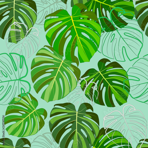 Fototapety, obrazy: Print of tropical green leaves, Monstera, on a light mint background.