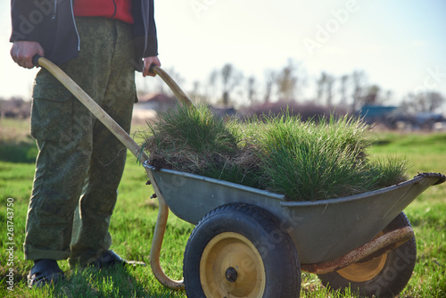 Fotografía  a man holding a cart - wheelbarrow filled with turf with green grass on a backgr