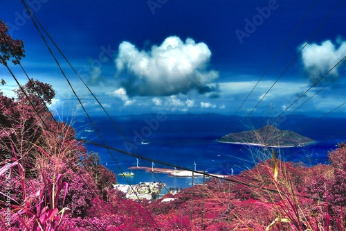 Fantasy infrared shots of purple landscapes on the Seychelles islands