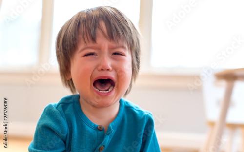 Billede på lærred Upset crying and mad little toddler boy