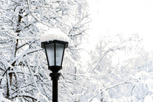 Winter Street And City Lantern...