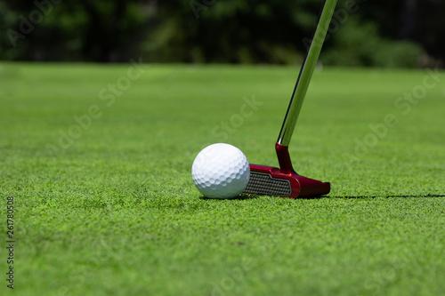 Fototapeta golf, pallina, buca, putt, putter, traguardo, sfida