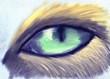 Green dog eye.