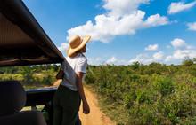 Woman Enjoying View From The Safari Truck
