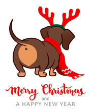 Christmas Dachshund Puppy Dog Vector Cartoon Illustration. Cute Wiener Sausage Dog  Wearing Red Scarf And Antlers. Funny Doxie Butt, Pets, Dog Lovers, Children, Animal Themed Christmas Greeting Card.