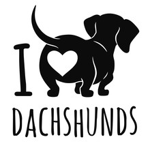 Cute Dachshund Dog Vector Illu...