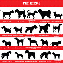 Vector Terriers Silhouettes