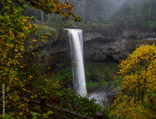 Silver Falls State Park Oregon. This amazing clean waterfall was captured with a long exposure to slow the dreamy water. The majestic fall contrasts nicely against the moss covered evergreens