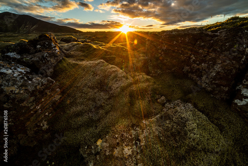 Fotografie, Obraz  Moss covered fields in Iceland