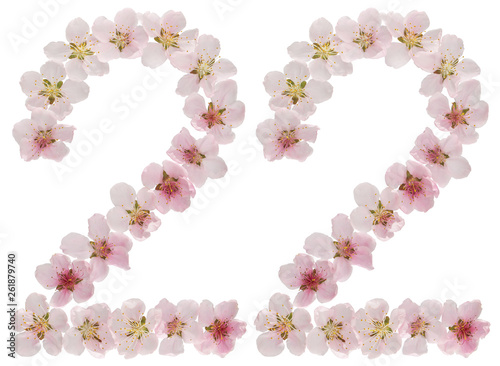 Fotografia  Numeral 22, twenty two, from natural pink flowers of peach tree, isolated on whi