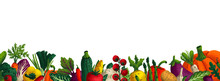 Wide Horizontal Vegetable Background. Copy Space. Variety Of Decorative Vegetables With Grain Texture On White Background. Farmers Market, Organic Food Poster, Cover Or Banner Design. Vector.