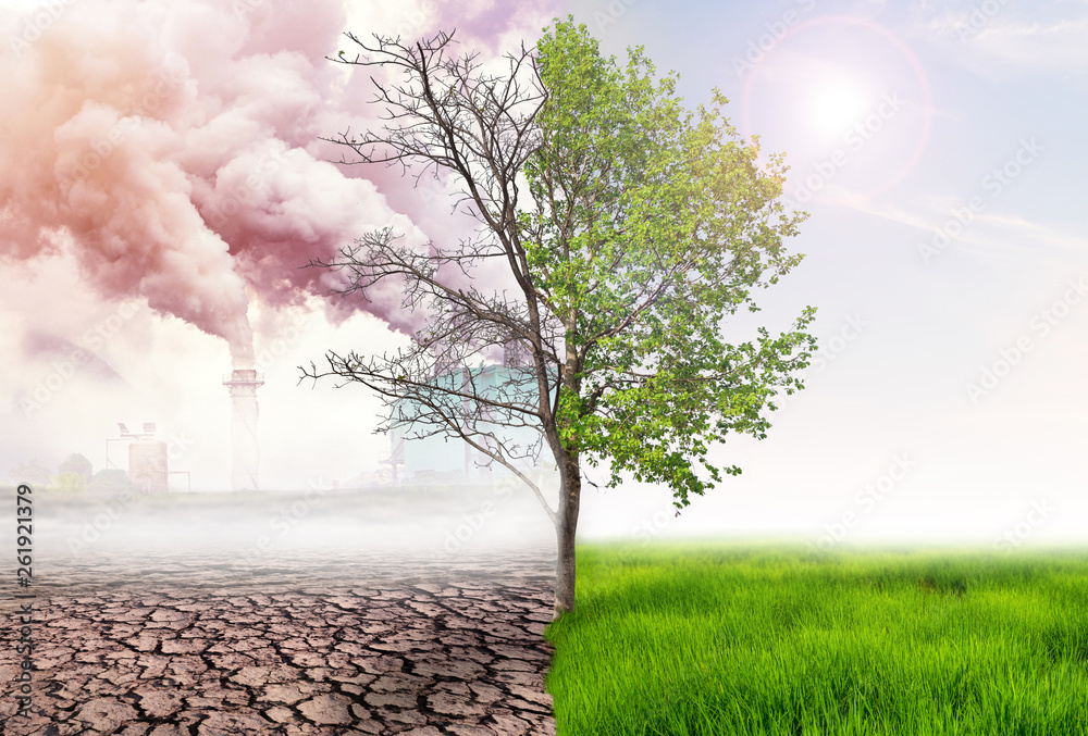 Fototapeta comparing green earth and effect of air pollution from human action, glbal warming concept, green tree and green earth with light and arid land with air pollusion at background