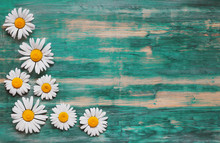Background Of Daisies On An Old Wood Board