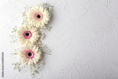 Door stickers Gerbera Beautiful flowers on white textured background