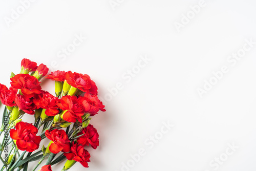 top view of carnation on white for mothers day Wallpaper Mural