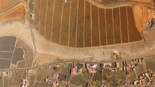 Aerial View Of A Large Aloe Ve...