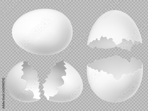Fototapeta Vector realistic white eggs set with whole and broken eggs isolated on transparent background. Illustration of eggshell, shell from broken egg obraz