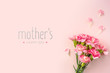 canvas print picture - top view of carnation on pink for mothers day