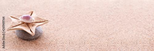 Photo sur Plexiglas Zen pierres a sable Zen stones, sand and seashells panoramic zen still life