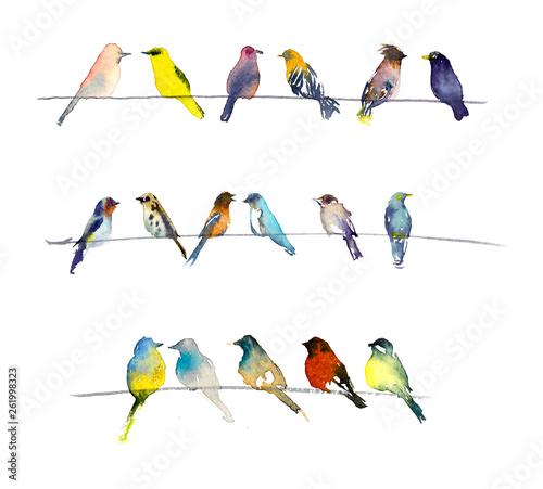 Spoed Foto op Canvas Vogels, bijen Birds. Watercolor hand dawn illustration