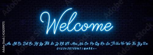 Fototapeta Elegant handwritten neon letters of the English alphabet obraz
