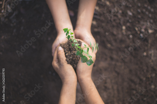 Fotografía  hand of children holding plant and soil with bokeh and nature background, save the world and World Environment Day concept at sunny day