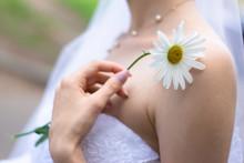 A Bride In A White Wedding Dre...