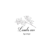 Lambs Ear Plant Branch. Greenery Design Element.