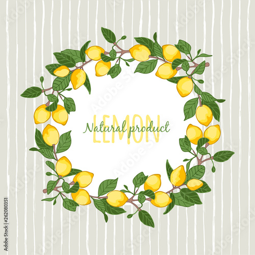 Fotografía vector illustration decorative wreath of lemons,place for your lettering,  carto