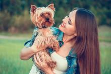 Yorkshire Terrier. Girl Hugging A Dog Breed Yorkshire Terrier