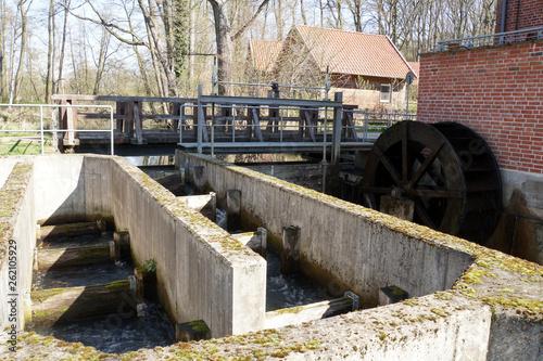 Foto  Fischtreppe und Mühlrad - historische Woltersburger Mühle