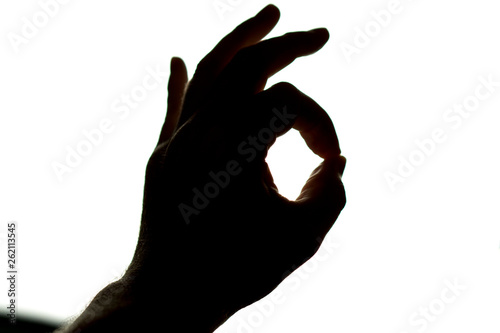 Silhouette of hand on white background making okay sign, signal for OK or all ri Fototapet