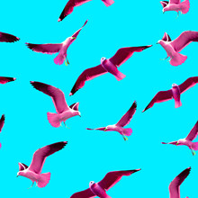 Seamless Pattern In Pop Art Style With Pink Seagulls On A Blue Background.