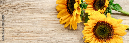 Sunflowers on wooden background.