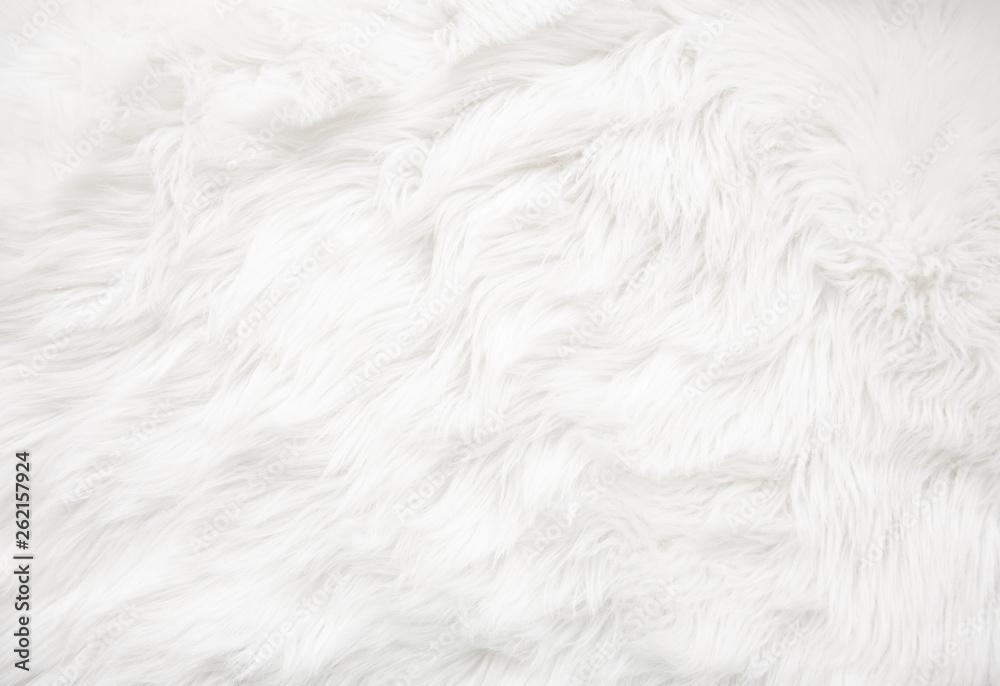 Fototapeta White fur texture