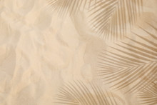 Selective Focus Of Summer And Holiday  Backgrounds Concepts With Shadow Of Coconut Leaf On Clean Sand Beach