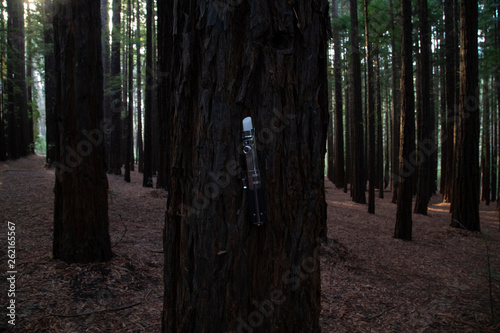 Photo  Lightsaber replica at redwood forest, Warburton