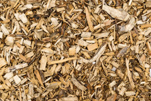 Wood Bark Chip Mulch. Full Background View.