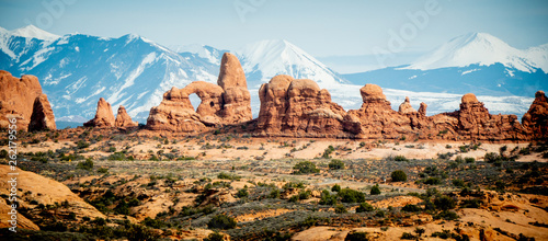 Garden Poster Natural Park Arches National Park - most beautiful place in Utah - travel photography