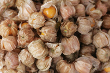 Cape Gooseberry In Market