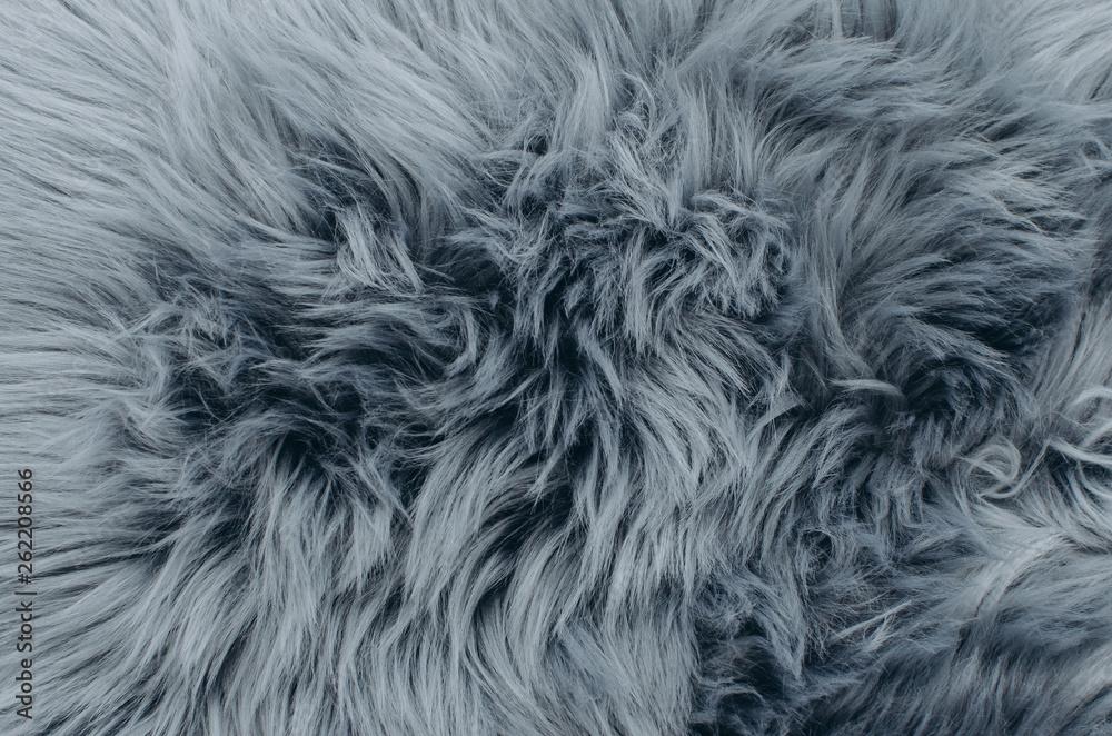 Fototapeta Close up shot of abstract fur background. Grey artificial fur texture